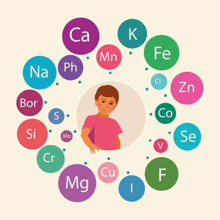 Basic micronutrients and macronutrients (minerals) necessary for human health, including childrens health. Conditional scheme.