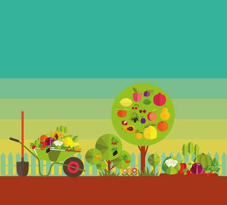 Tuinieren. Biologische teelt van groenten en fruit. Fruitbomen, tuin bed met groenten en bessen, tuin kruiwagen met de oogst.