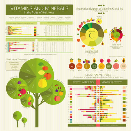 comparative: vector Infographic: The content of vitamins and minerals in the fruits of fruit trees. Comparative analysis. Visual diagrams and data tables. Basics of healthy nutrition.