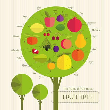 tillage: �rbol frutal condicional con frutas que crecen en los �rboles de diferentes pa�ses. Se firm� Cada fruta. Jardiner�a. Vectores