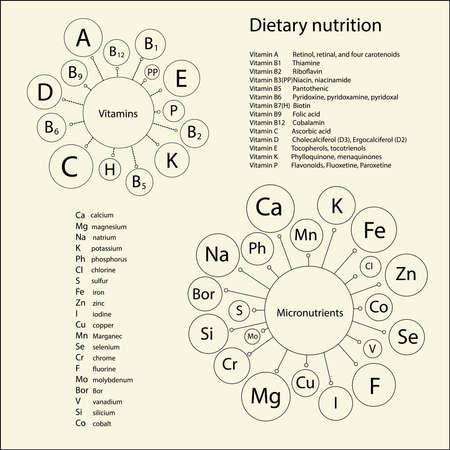 ascorbic: Essential vitamins and trace elements necessary for human health. Schematic representation and lists short and full names of the items.