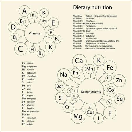 human health: Vitaminas esenciales y oligoelementos necesarios para la salud humana. Representaci�n esquem�tica y listas cortas y los nombres completos de los art�culos.