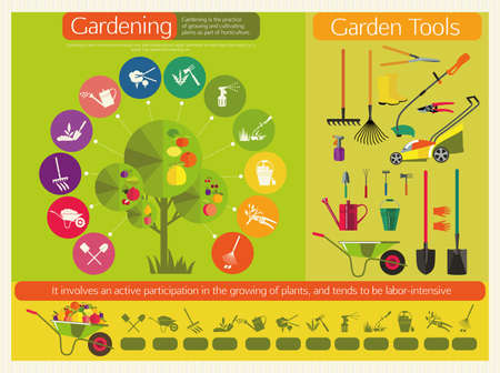 levelling: Organic cultivation of fruit trees. Stages planting, digging the earth, irrigation, fertilizer, spraying, weed control, harvesting in the garden. Garden tools.