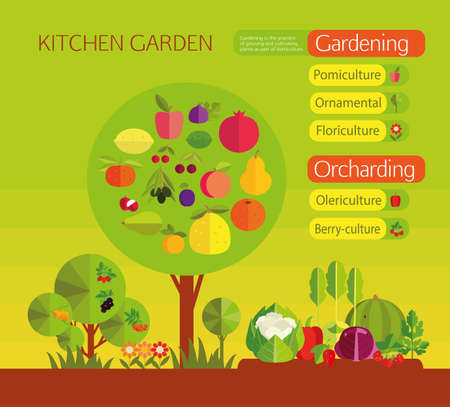 cultivating: Kitchen garden. Organic cultivation of fruit and vegetables. Pomiculture, Ornamental, Floriculture,Olericulture,Berry-culture.