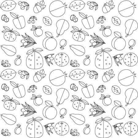 citrus maxima: Contour black and white seamless pattern of fruit. White background, black contour. Illustration