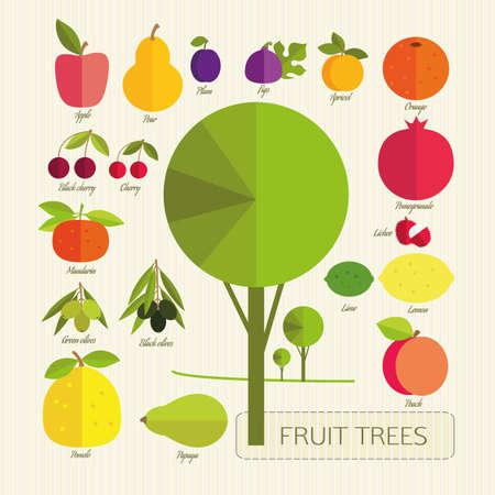 tillage: Los frutos de los árboles frutales. Frutas de colores y árbol sobre un fondo claro de la textura. Jardinería. Vectores
