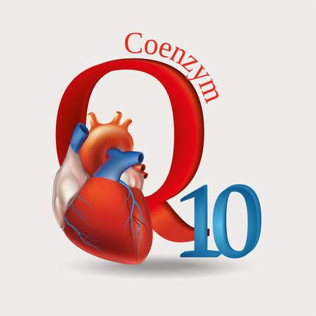 コエンザイム Q10 - 正常な心臓機能の維持に必要な抗酸化物質の模式図。明るい背景。