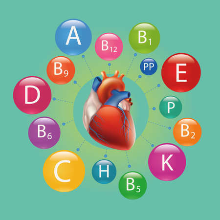 schematic: Schematic representation of the heart and vitamins necessary for human health.