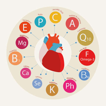 palpitation: Schematic representation of the heart and the basic substances required for normal cardiac activity.  Nutrition and Heart Health.