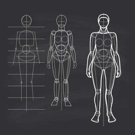 human figure: La construcción del circuito de la figura humana. Figura femenina - hombros estrechos, caderas anchas. Dibujo lineal. Tiza en la pizarra de los estudiantes.