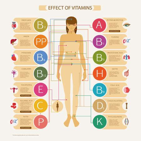 La mayor influencia en los órganos y sistemas del cuerpo humano. Esquema visual con el nombre científico y una breve descripción de la acción de las vitaminas esenciales necesarios para la salud humana. Ilustración de vector