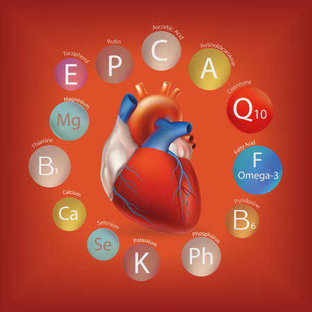 substances: Schematic representation of the heart and the basic substances required for normal cardiac activity. Human health and nutrition.  Nutrition and Heart Health. Illustration