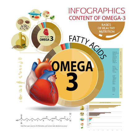 Infographics Foods with the highest content of Omega-3. Healthy heart and cardiovascular system. Healthy lifestyle. Balanced diet. Basics of healthy nutrition