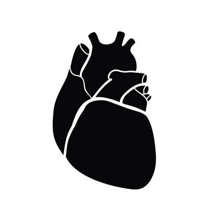 hollow body: Schematic representation of the human heart. A black image on a white background