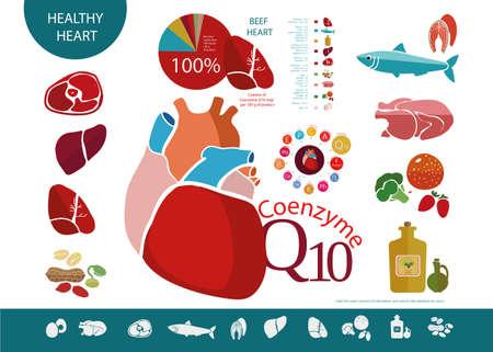 Voedingsmiddelen die nuttig zijn voor het hart en cardiovasculaire systeem, met een hoog gehalte aan co-enzym Q10. Vlees, vis, olie. De basis van een gezonde voeding Vector Illustratie