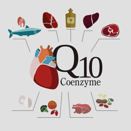 Foods with the highest content of Coenzyme q10: fish, beef and pork meat, nuts, oils. � Heart health and health of the cardiovascular system. Basics of healthy nutrition.  Light background. scheme Illustration