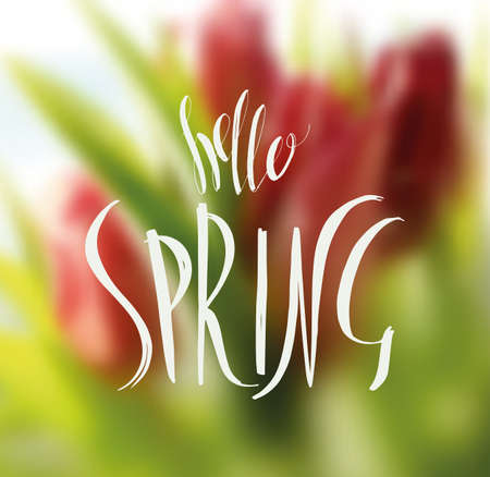 Lettering Hello Spring. Hand writing. White inscription on the background of spring flowers
