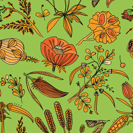 Seamless background with a floral pattern. Wildflowers, plants, leaves. Pattern for textiles
