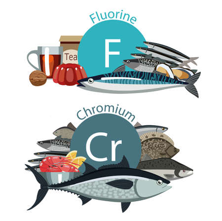 """Infographie """"Aliments santé"""", Fluor, Chrome Vecteurs"""