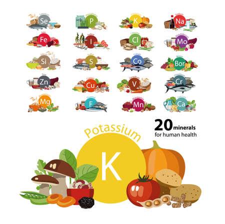 20 mineralen voor de menselijke gezondheid Stock Illustratie