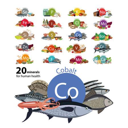 20 minerals for human health Illustration