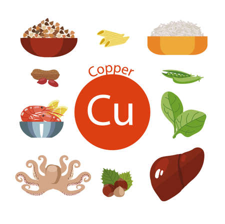 Food rich with copper. Healthy Food series. Natural organic products: Seafood, vegetable food, cereals