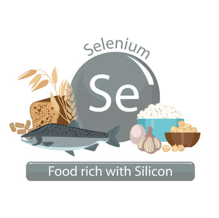 Products rich with selenium. Bases of healthy food. Composition from natural organic products and the sign of selenium on a white background. Healthy lifestyle Illustration