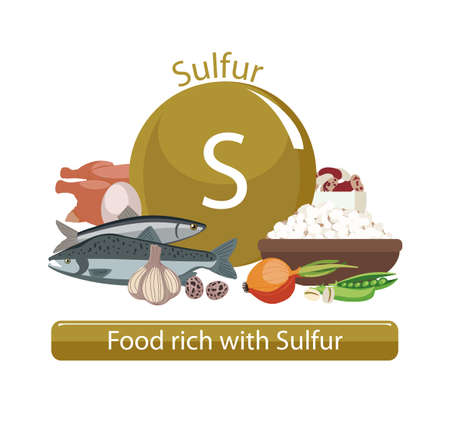 Products rich with sulfur. Bases of healthy food. Composition from natural organic products and the sign of sulfur on a white background. Healthy lifestyle Imagens - 87677890