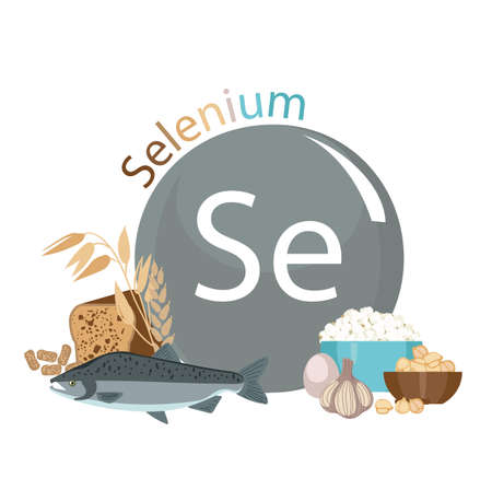 Products rich with selenium. Bases of healthy food. Composition from natural organic products and the sign of selenium on a white background. Healthy lifestyle Çizim