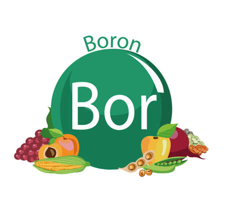 Food rich with a boron. Healthy Food series.