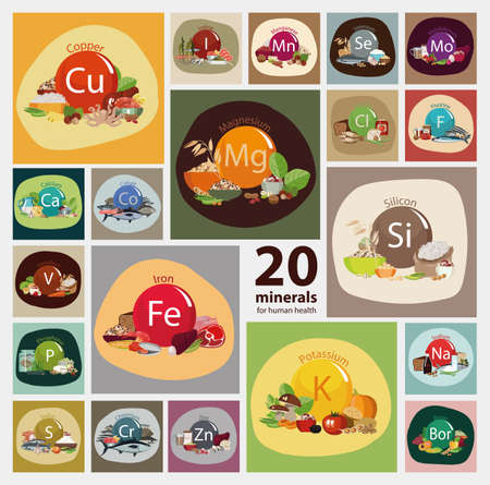 Bases of a healthy nutrition Illustration