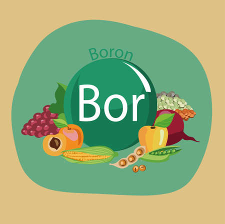 Food rich with a boron