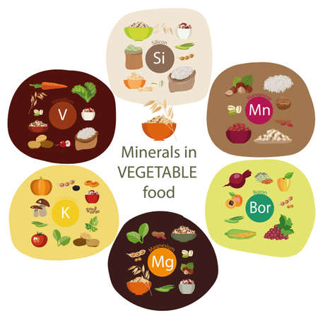Minerals in food. Composition of Minerals and organic plant products.