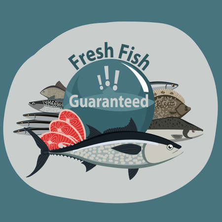 Guaranteed fresh fish. Composition from different types of fish and shrimp