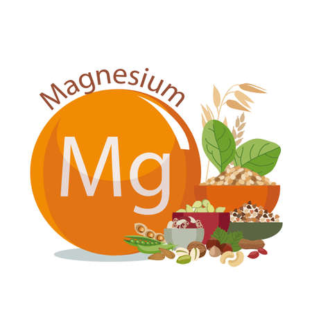 Magnesium in food. Healthy lifestyle concept. Çizim