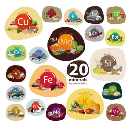 Composition of Minerals and organic plant products. Иллюстрация