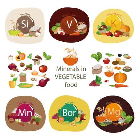 Mineralien in pflanzlichen Lebensmitteln. Zusammensetzung von Mineralien und organischen Pflanzenprodukten. Gesundes Essen