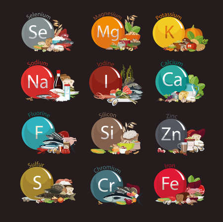 12 microelements for human health. Food sources. Food with the maximum content of basic minerals. Illustration