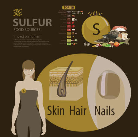 Infographics. Sulfur. Food sources and influence on human health.