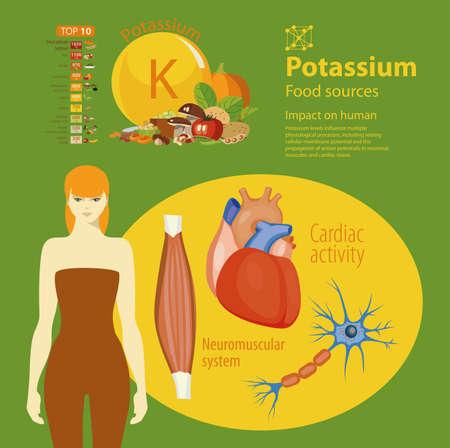 Infographics. Kalium. Voedselbronnen en invloed op de menselijke gezondheid.