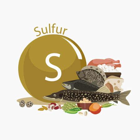 硫黄および食料源インフォグラフィック desigb