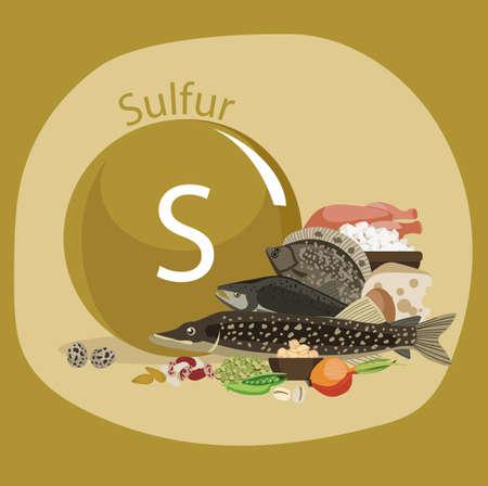Sulfur and food sources infographic design background Ilustração