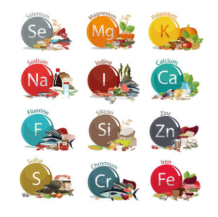 12 microelements for human health. Food sources. Food with the maximum content of basic minerals. White background Illustration