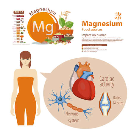 Infographics on Magnesium, Food sources and influence on human health.