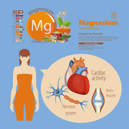 Infographics. Magnesium. Food sources and influence on human health.
