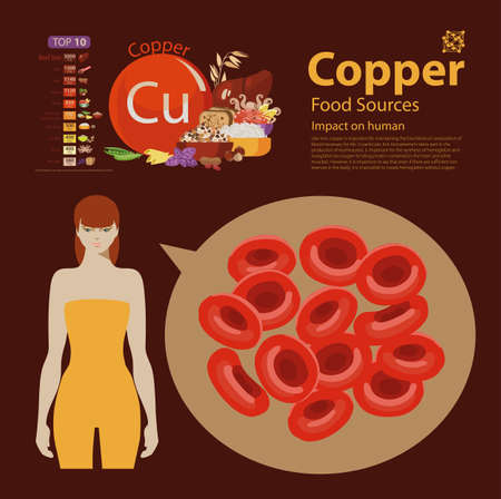 Copper food sources and benefits with bread veggies and squid Reklamní fotografie - 90228002