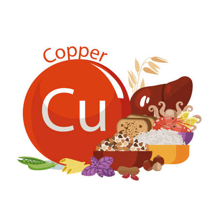 copper. Food sources. Food products with the maximum copper. Composition from the sign of sodium and natural organic products. Basics of a healthy diet.