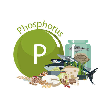 Phosphorus. Food sources. Food products with the maximum Phosphorus content. Composition from the sign of sodium and natural organic products. Basics of a healthy diet. Ilustrace