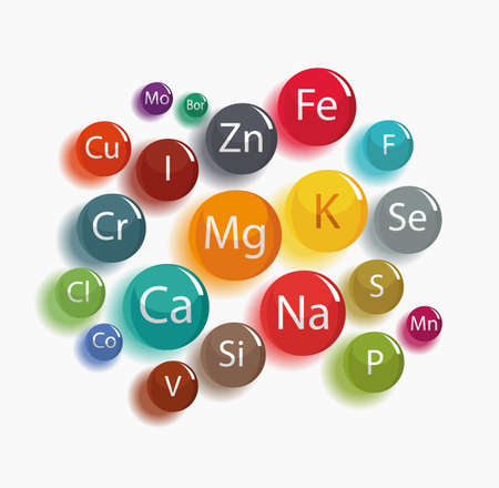 20 minerals: microelements and macro elements, useful for human health. Fundamentals of healthy eating and healthy lifestyles. Vettoriali
