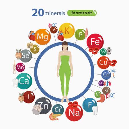 20 鉱物: 微細構造とマクロ要素と人間の体の器官の健康への影響。健康的な食事と健康的なライフ スタイルの基礎.  イラスト・ベクター素材